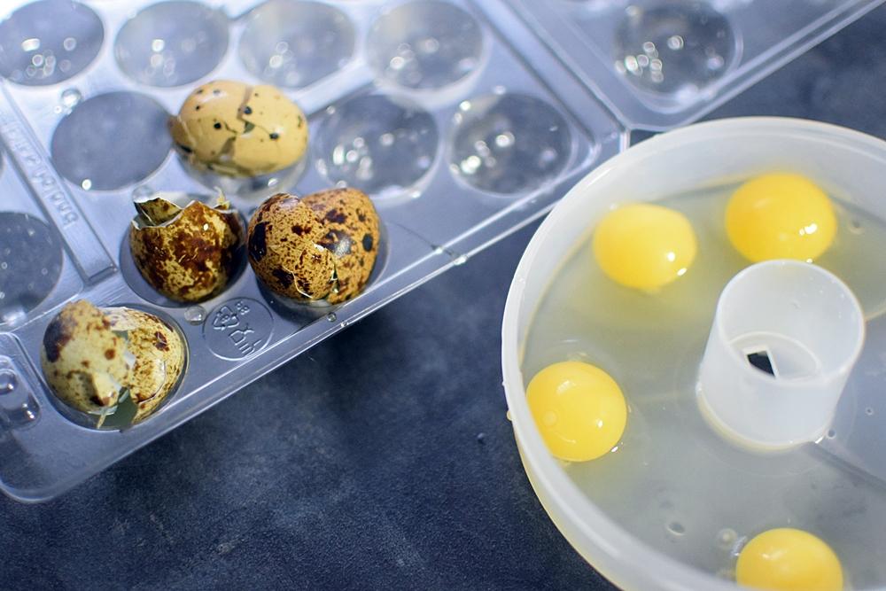 pierwsza jajecznica dla niemowlaka